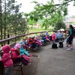 vylet zoo skolka (4)