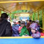 vylet zoo skolka (8)