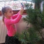 zdobeni-stromku-6