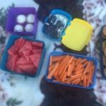 piknik zamek 1