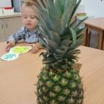 ananasový den (3)