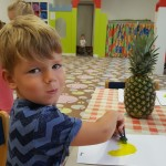 ananasový den (4)