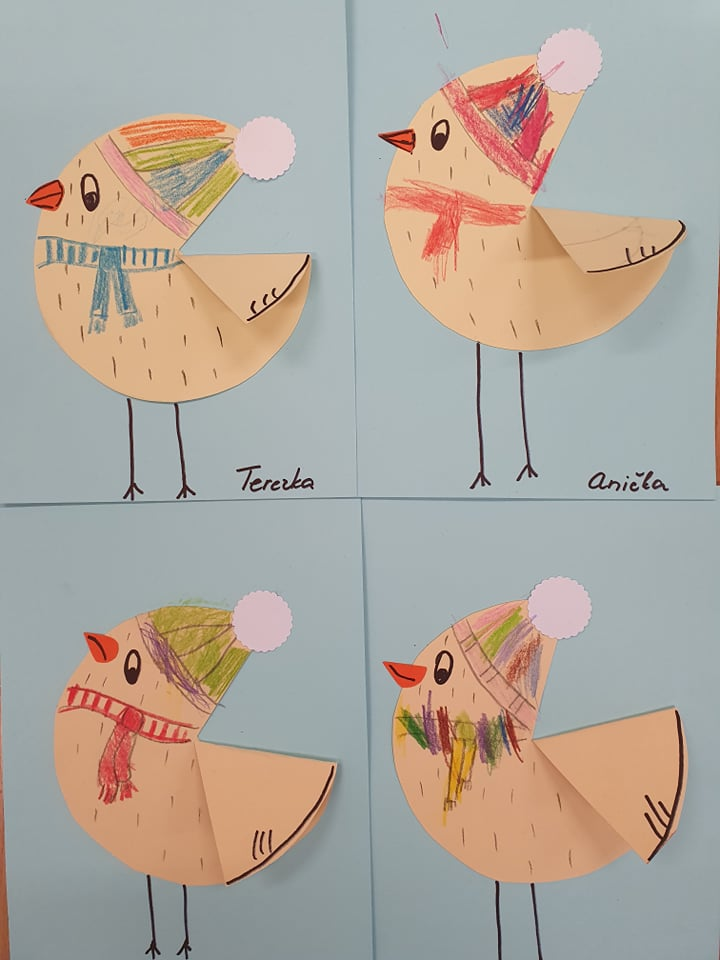 ptacci (12)